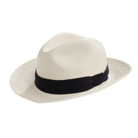 Panama hat-1